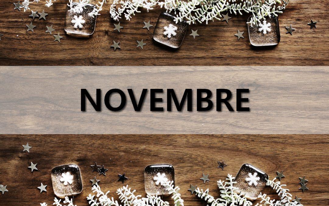Newsletter Novembre : Retour PGW, incubateur Esport, plateforme Orientation métiers